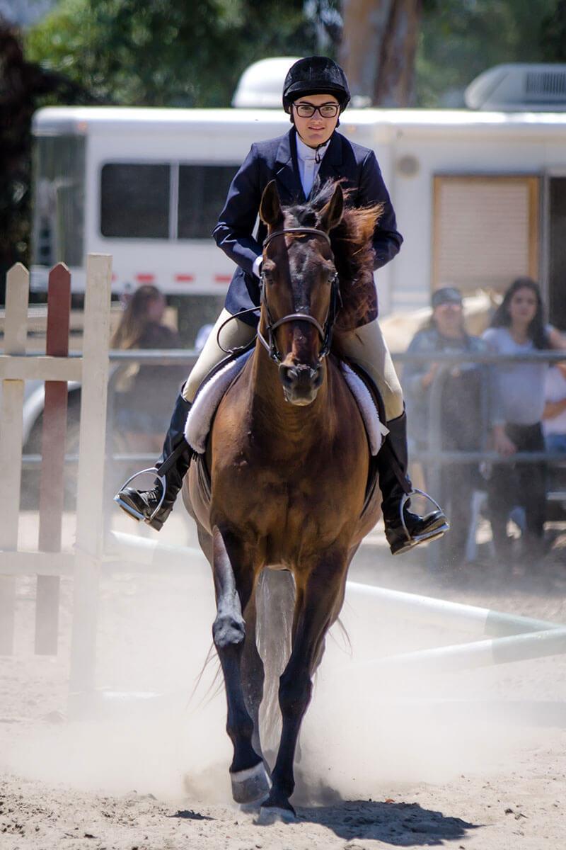 sunnyside-saddle-club-aug-2016-horse-show-gallery