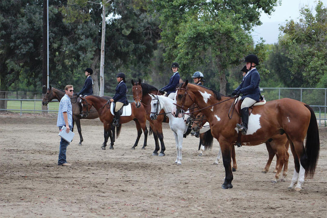 sunnyside-saddle-club-gallery2-2015