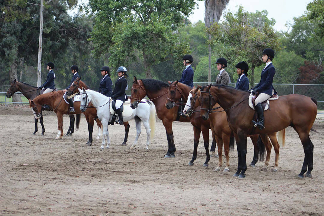 sunnyside-saddle-club-gallery6-2015