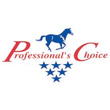 prochoice_logo